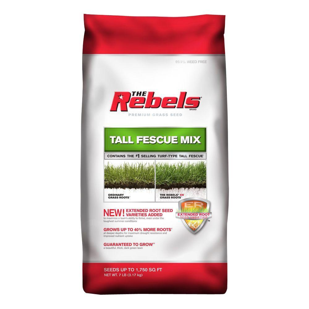 The Rebels 7 lbs. Tall Fescue Grass Seed PCG Mix
