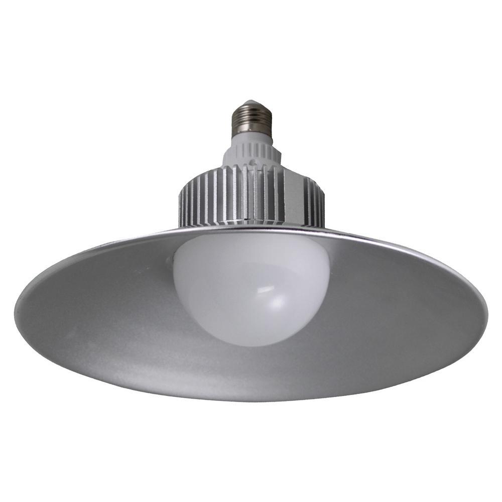 300W Equivalent Bright White G25 4400-Lumen LED Utility Light Bulb