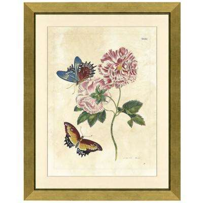 """""""Butterflies and a rose"""" Framed Archival Paper Wall Art (26 in. x 32 in. in full size)"""