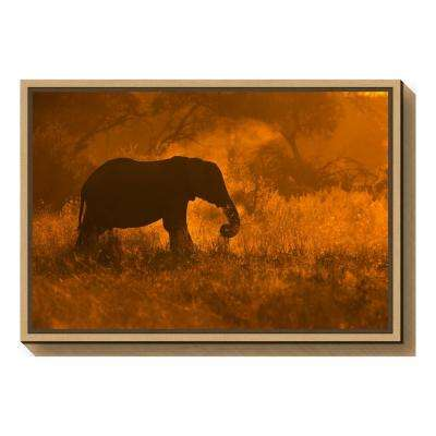 """""""Golden Elephant in Savute"""" by Mario Moreno Framed Canvas Wall Art"""