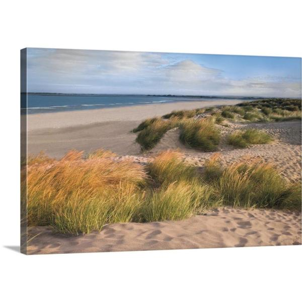 Greatbigcanvas Sandy Shores By Assaf Frank Canvas Wall Art 2545841 24 30x20 The Home Depot