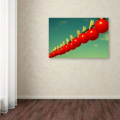 "16 in. x 24 in. ""Sundried Tomatoes"" by Beata Czyzowska Young Printed Canvas Wall Art"