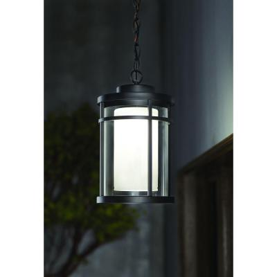 Black Outdoor LED Hanging Light