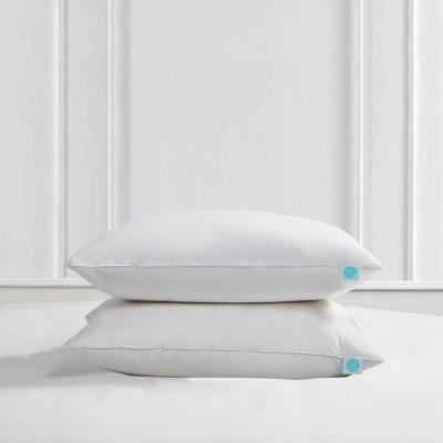 240-Thread Count Poly Around Medium Firm Feather and down Standard/Queen Size Pillow (2-Pack)