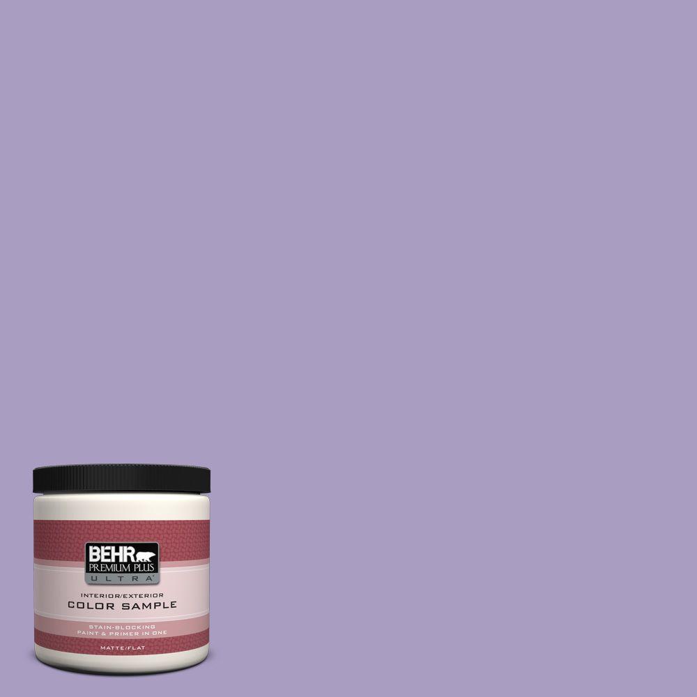 8 oz. #M560-4 Evening Slipper Interior/Exterior Paint Sample