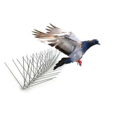 10 ft  Original Stainless Steel Bird Spikes Pigeons Starling Blackbirds  Seagulls 6 in  Coverage