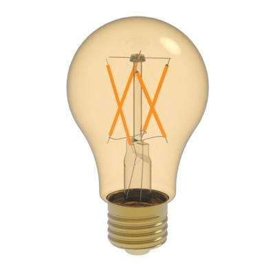 60W Equivalent Warm White (2400K) A19 Dimmable Amber LED Light Bulb
