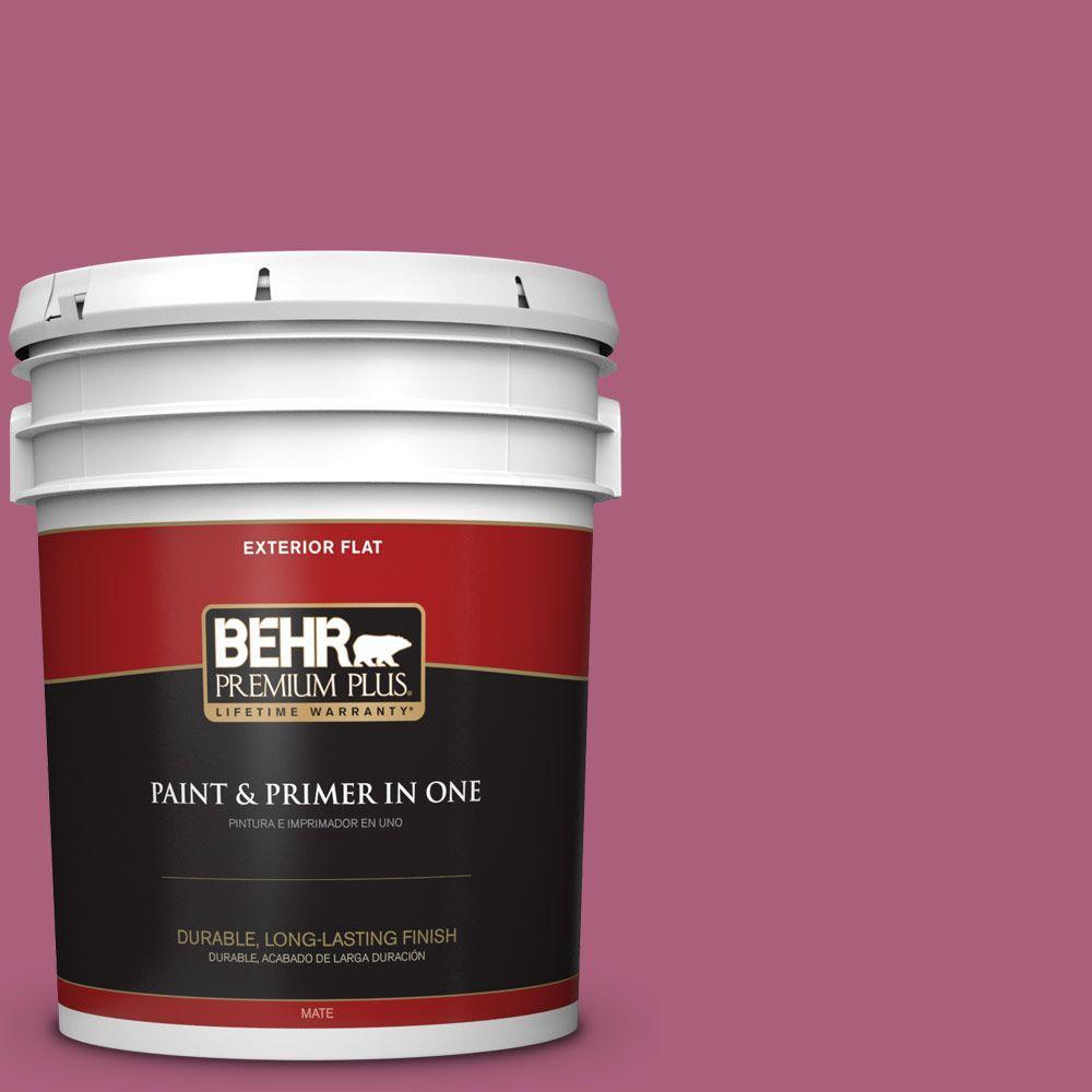 BEHR Premium Plus 5-gal. #T13-1 Daah-Ling Flat Exterior Paint
