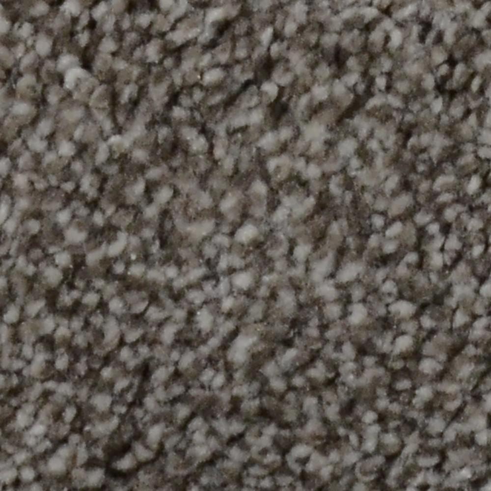 Platinum Plus Carpet Sample Gemstone II Color Miner