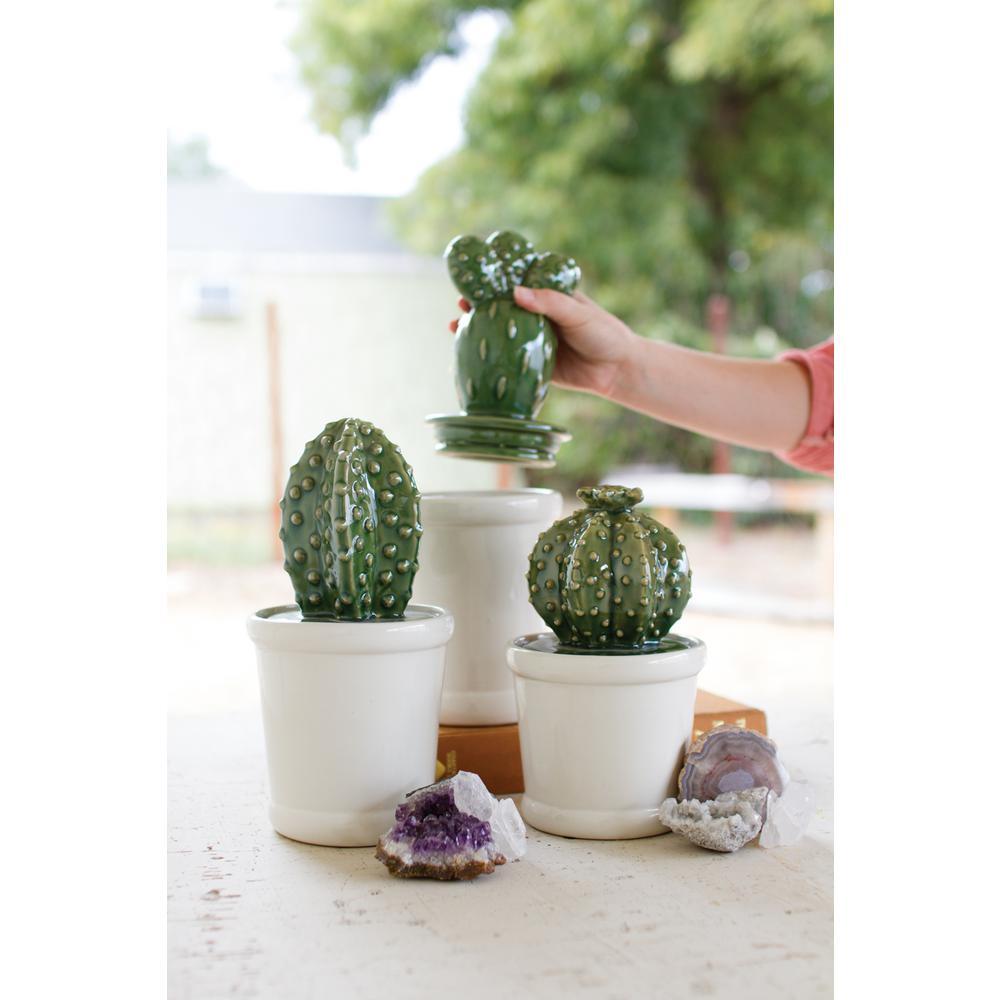 3-Piece Ceramic Cactus Canister Set with Ceramic Lids