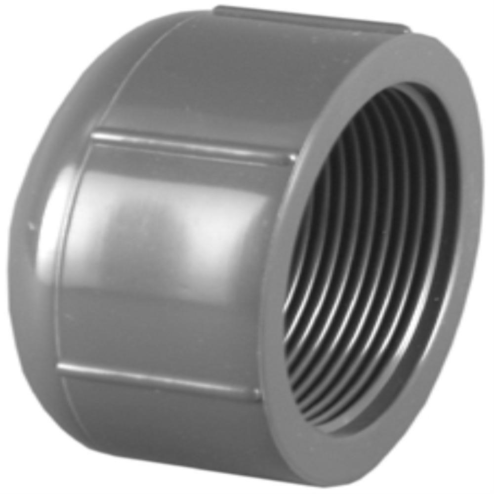 3/4 in. Sch. 80 PVC FPT Cap