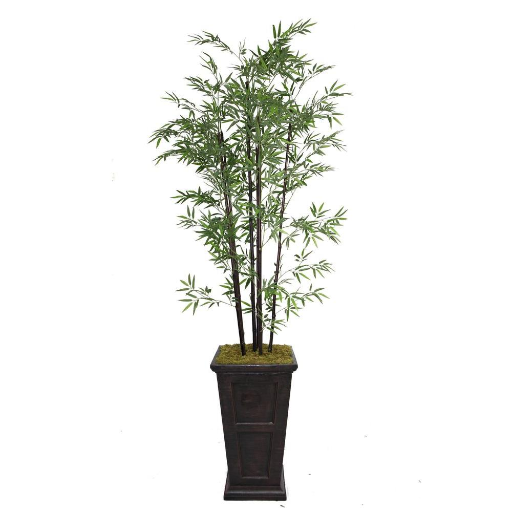 Tall Black Bamboo Tree In 16 Fiberstone Planter Vhx106201 The Home Depot