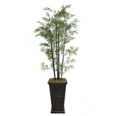 91 in. Tall Black Bamboo Tree in 16 in. Fiberstone Planter