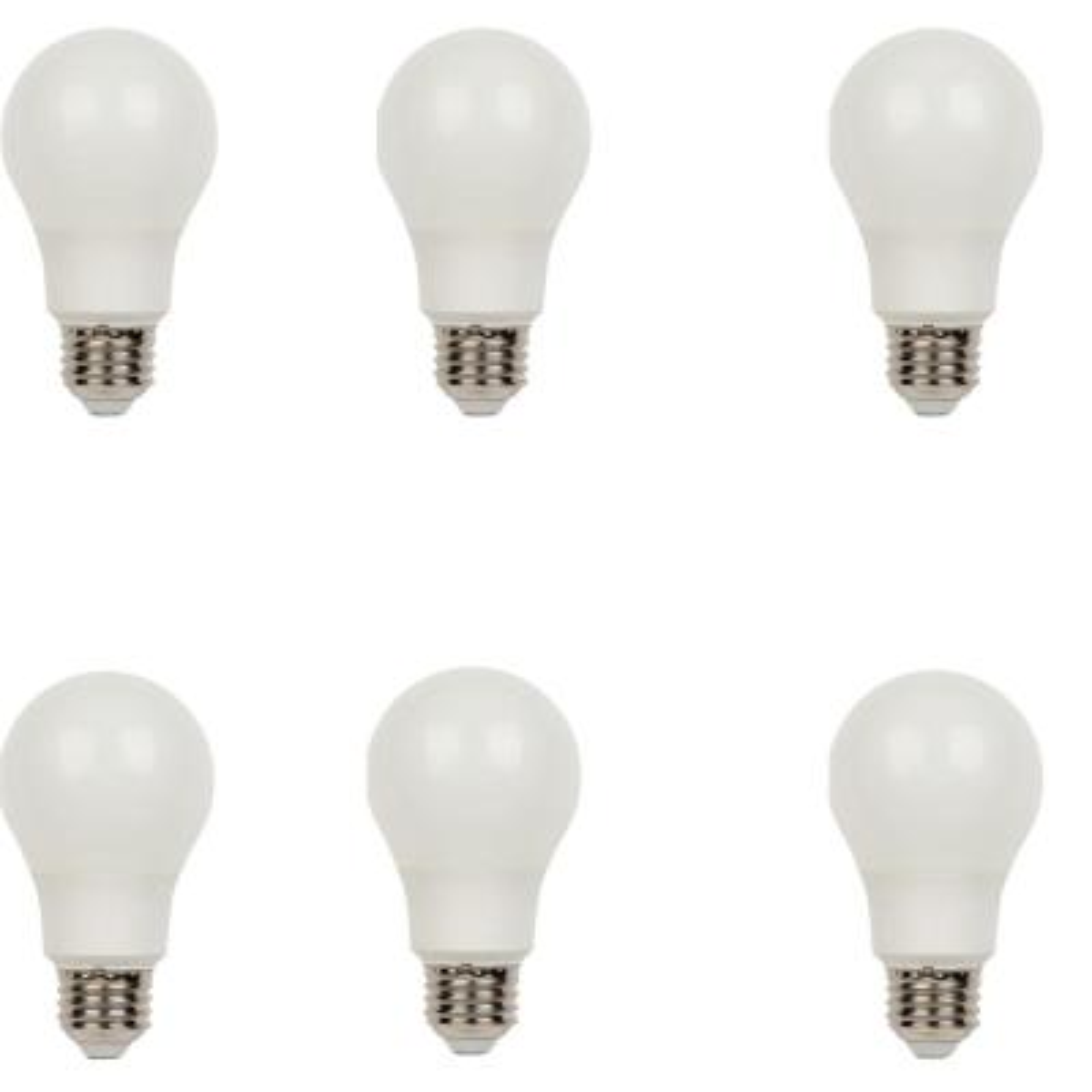 40W Equivalent Bright White Omni A19 LED Light Bulb (6-Pack)