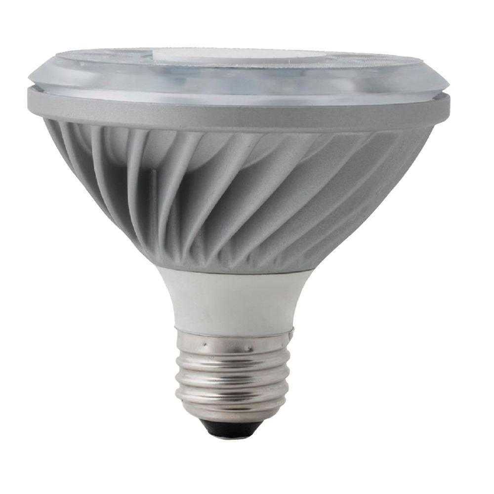 Definity Digital 65W Equivalent Amber Color (1250K) PAR30 Turtle-Friendly LED Light Bulb