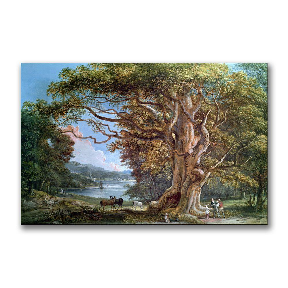 22 in. x 32 in. An Ancient Beech Tree, 1794 Canvas