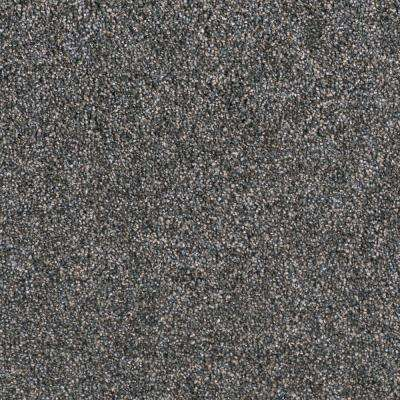 Carpet Sample - Wonderfully Made II - Color Whistle Bay Texture 8 in. x 8 in.