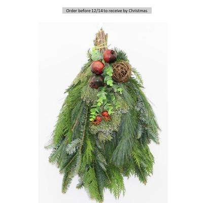 16 in. Fresh Mixed Christmas Delight Evergreen Swag