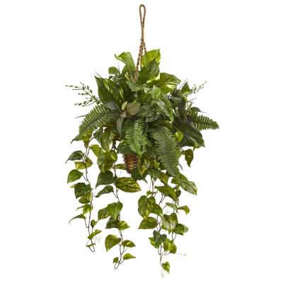 Indoor Mixed Pothos and Boston Artificial Fern in Hanging Basket