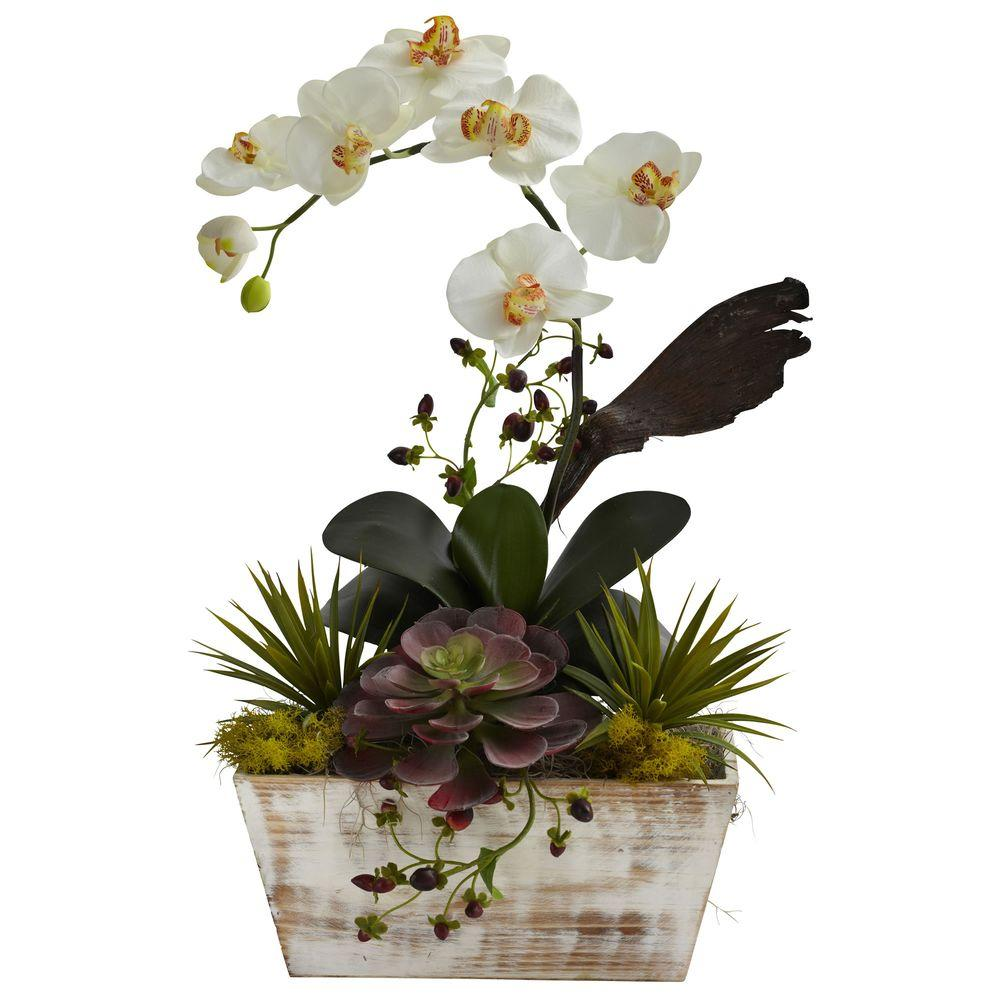 Nearly natural orchid and succulent garden with white wash planter nearly natural orchid and succulent garden with white wash planter 1326 the home depot mightylinksfo
