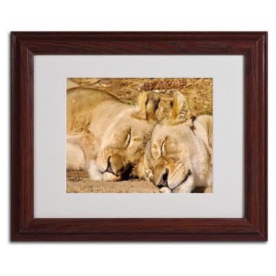 11 in. x 14 in. National Zoo - Lions Matted Framed Art