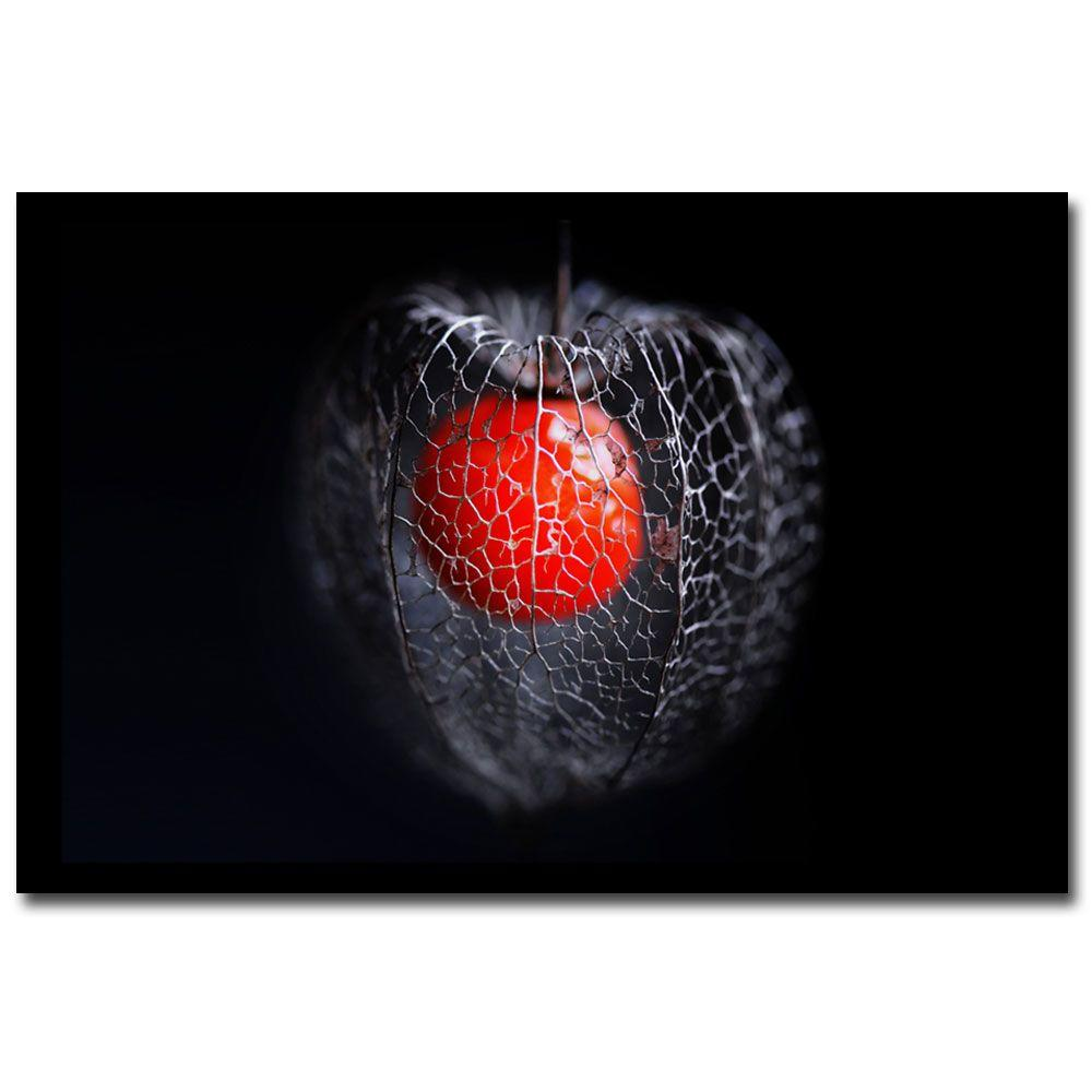 null 22 in. x 32 in. Physalis Canvas Art-DISCONTINUED