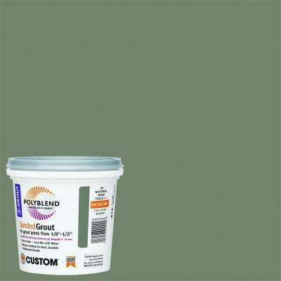Polyblend #09 Natural Gray 1 lb. Sanded Grout