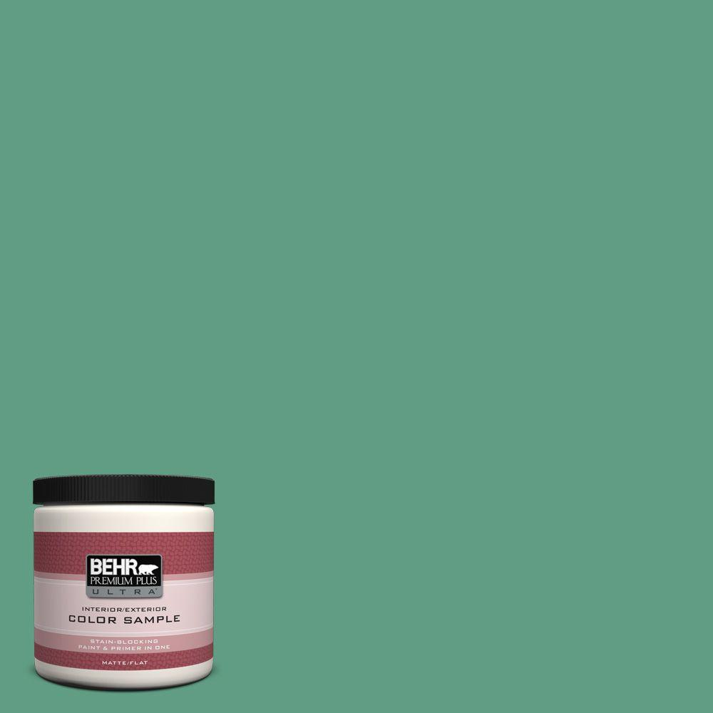 BEHR Premium Plus Ultra 8 oz. #480D-5 Scotch Lassie Interior/Exterior Paint Sample