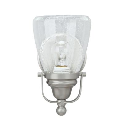 1-Light Brushed Nickel Vanity Light with Clear Seedy Glass Shade