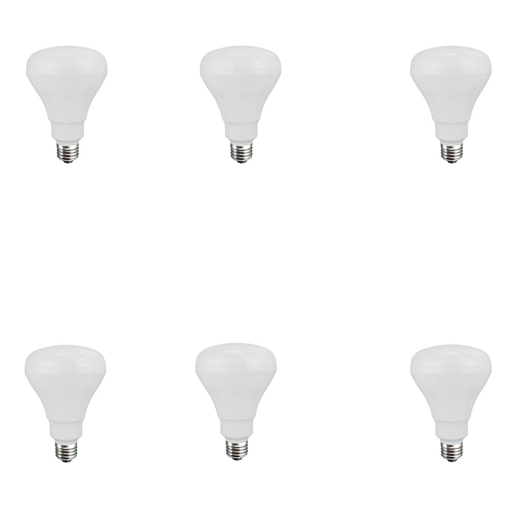 65-Watt Equivalent BR30 Non-Dimmable CFL Light Bulb Soft White (6-Pack)