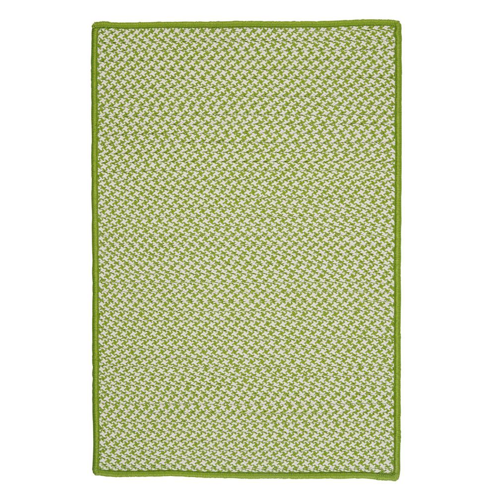 Sadie Lime 3 ft. x 5 ft. Indoor/Outdoor Braided Area Rug