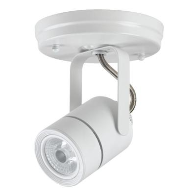 White Dimmable Track Lighting Head