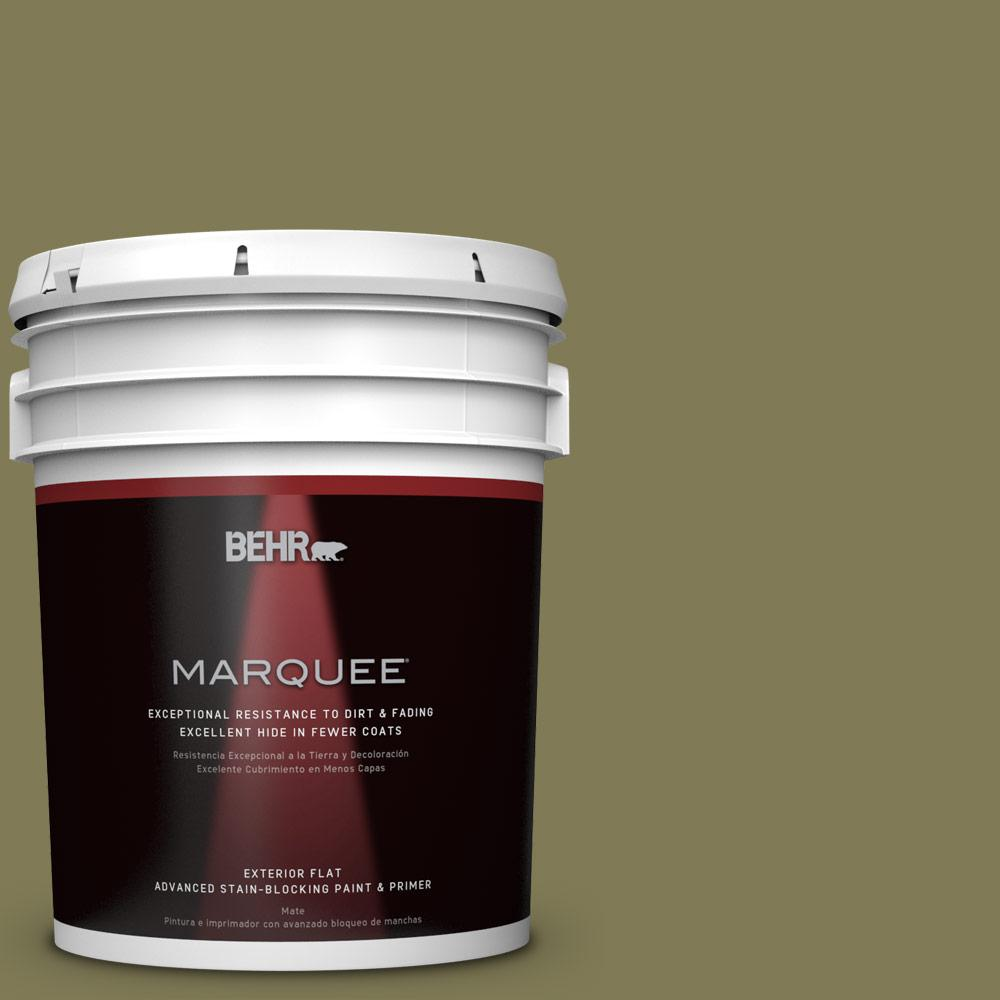 BEHR MARQUEE Home Decorators Collection 5-gal. #HDC-AC-17 Meadowland Flat Exterior Paint