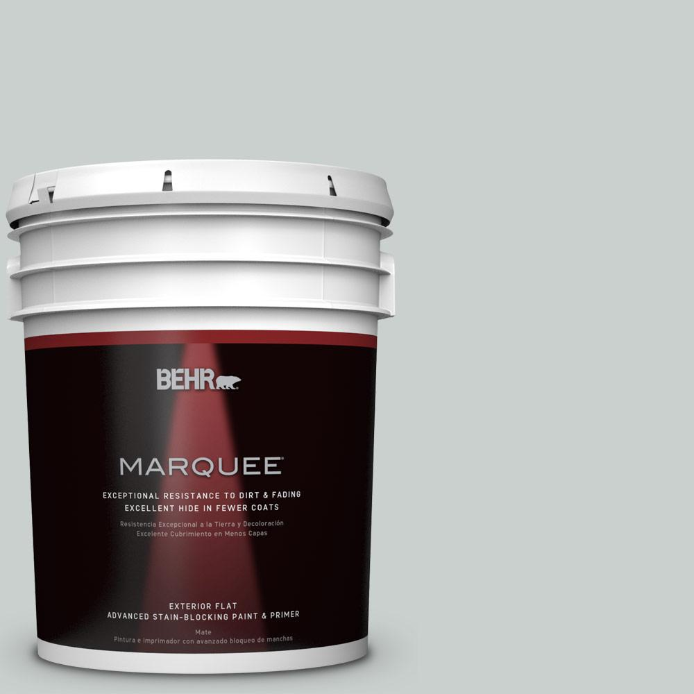 5 gal. #HDC-MD-06G Sparkling Silver Flat Exterior Paint