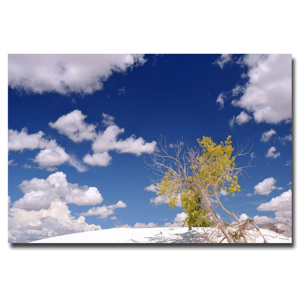 16 in. x 24 in. Clouds and Loneliness Canvas Art
