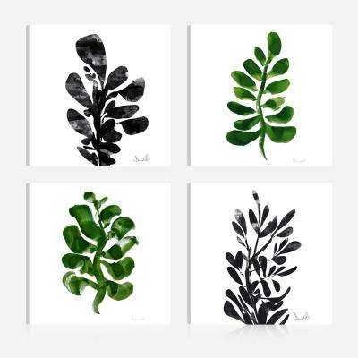 Botanical Plant Prints16 in. x 16 in. Giclee Print Canvas Wall Art (Set of 4)