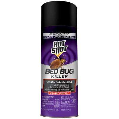 3 oz. Aerosol Bed Bug Killer W/ Egg Kill