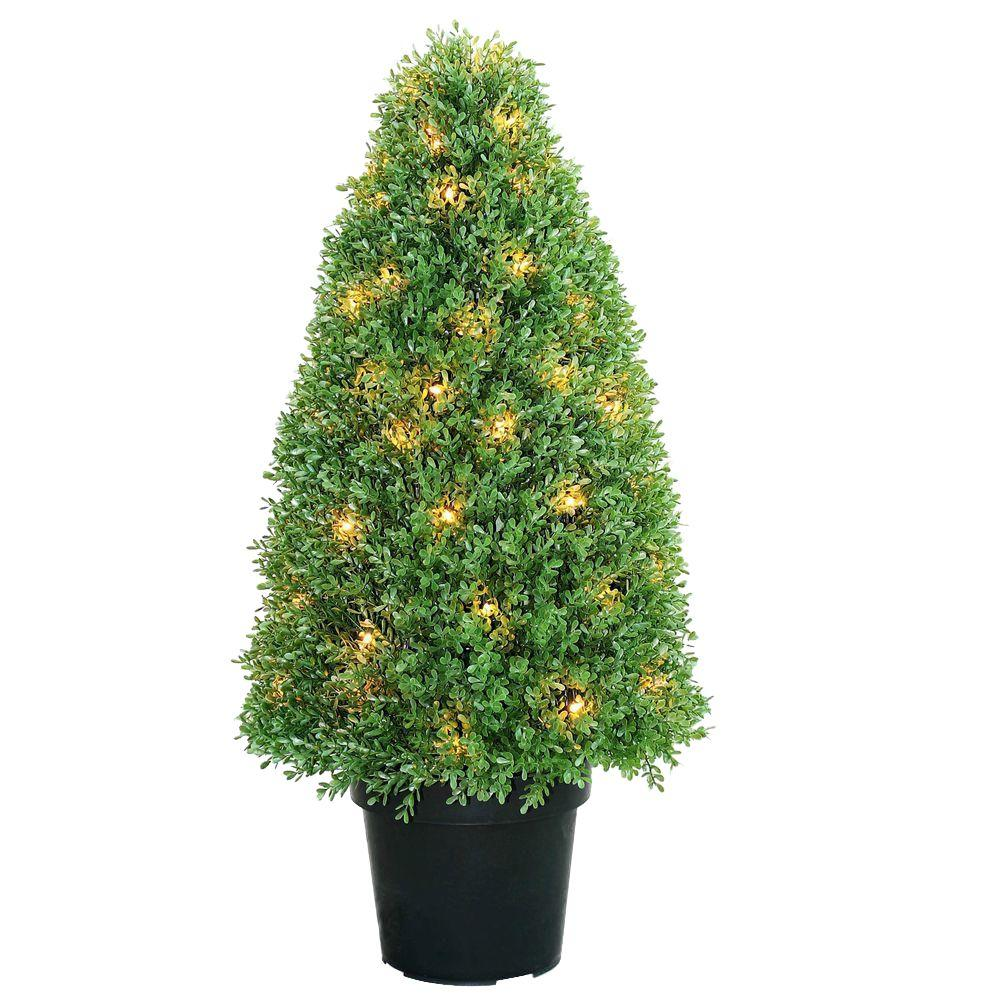 36 in. Boxwood Tree with Dark Green Growers Pot with 70