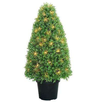 36 in. Boxwood Tree with Dark Green Growers Pot with 70 Clear Lights