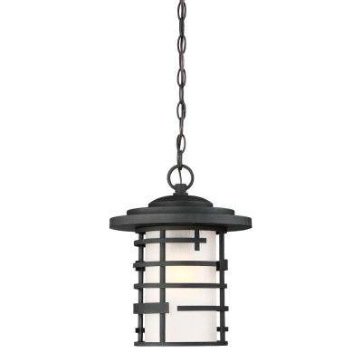 Textured Black 1-Light Outdoor Hanging Lantern with Etched Glass