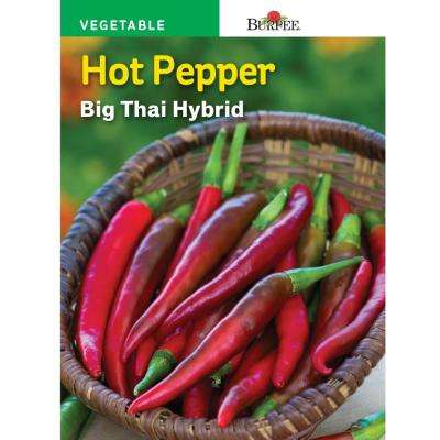 Asian Pepper, Hot Big Thai Hybrid Seed