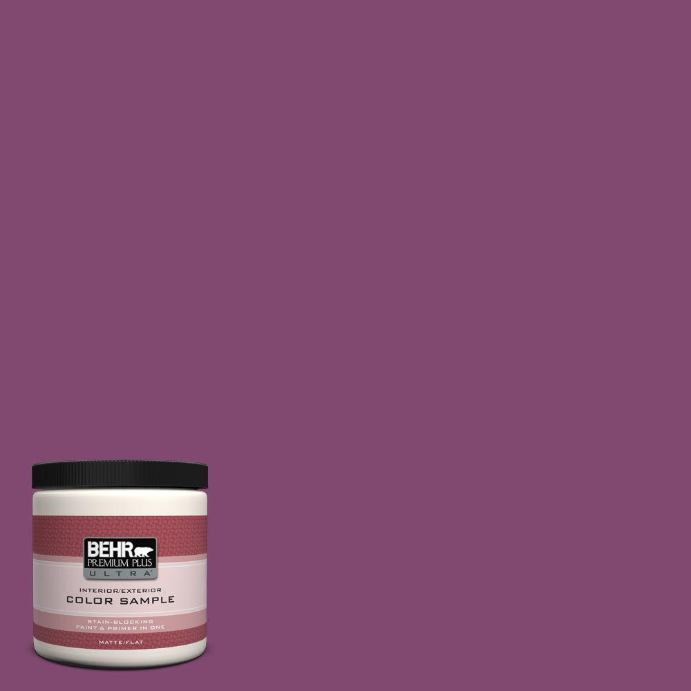 BEHR Premium Plus Ultra 8 oz. #680B-7 Sugar Plum Interior/Exterior ...