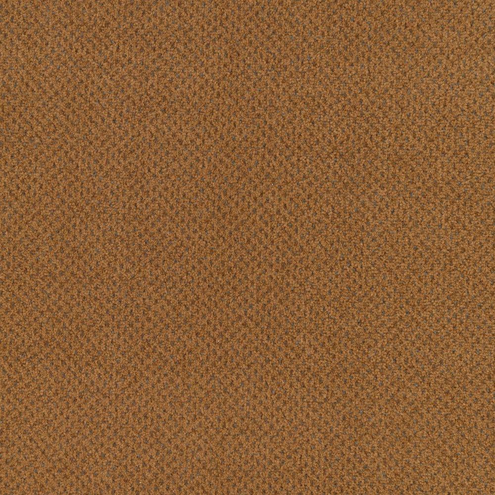 Carpet Sample - Market Share - Color Cottage Clay Pattern 8