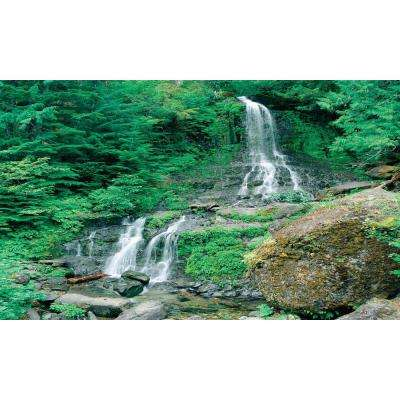 100 in. x 60 in. Window Well Scene - Waterfall