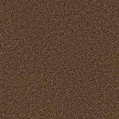 Carpet Sample - Hideaway I - Color Belle Haven Texture 8 in. x 8 in.