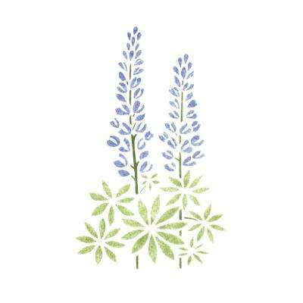 Lupine Flower Wall Stencil
