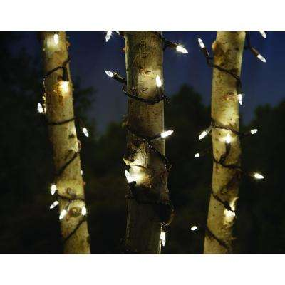 100-Light LED Smooth Mini Warm White Garden String Light
