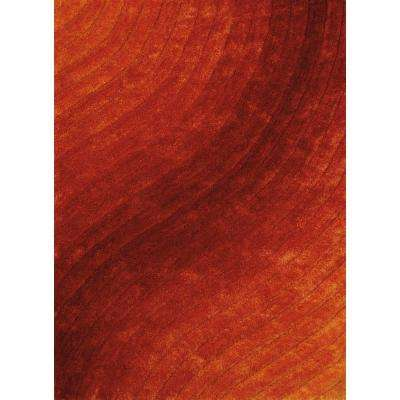 Burnt Orange 8 X 11 Area Rugs Rugs The Home Depot