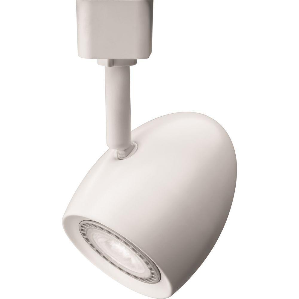 Ostrich Egg 1-Light White LED Track Lighting Head