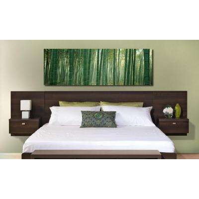 Series 9 1-Piece Espresso King Bedroom Set
